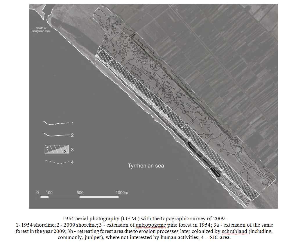 Environmental impact of coastal dunes in the area located to the left of the Garigliano River mouth Campany Italy
